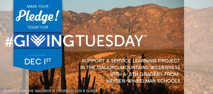 Light a spark in the next generation of conservationsists - GivingTuesday