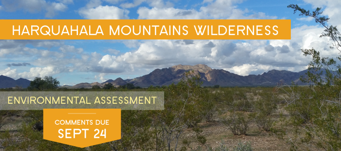 Harquahala Mountains Wilderness needs your voice!