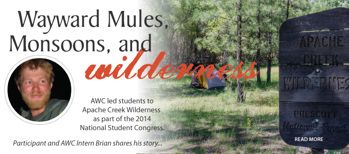 Wayward Mules, Monsoons, and Wilderness